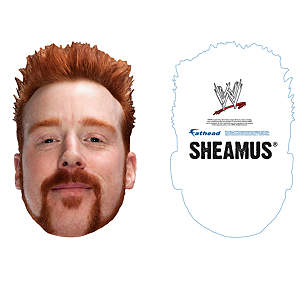 Sheamus Big Head