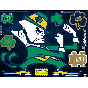 Notre Dame Fighting Irish Street Grip