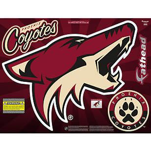 Phoenix Coyotes Street Grip