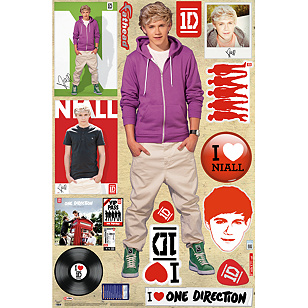 Niall Horan: One Direction