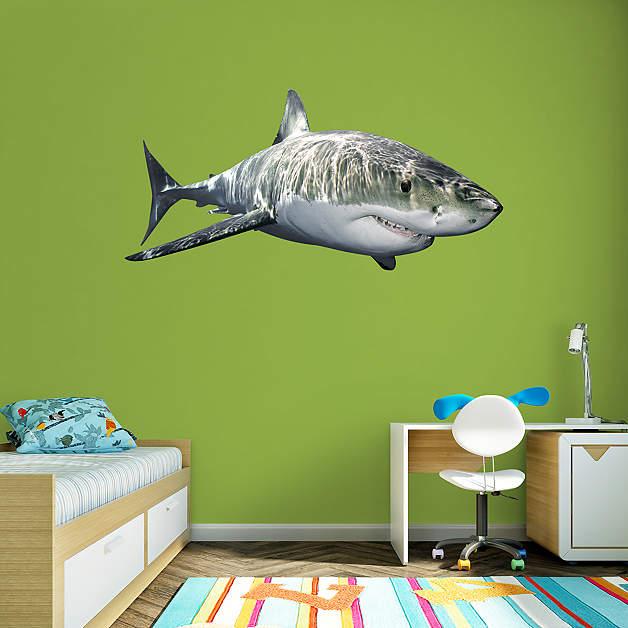Shark wall décor