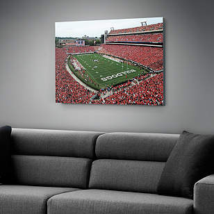 Georgia Bulldogs - Sanford Stadium Canvas