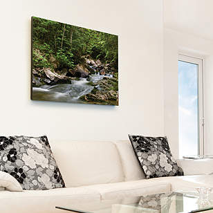 Wilderness Stream Canvas