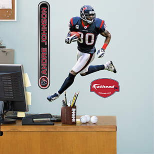Andre Johnson - Fathead Jr.