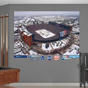 2014 NHL Winter Classic Aerial Mural
