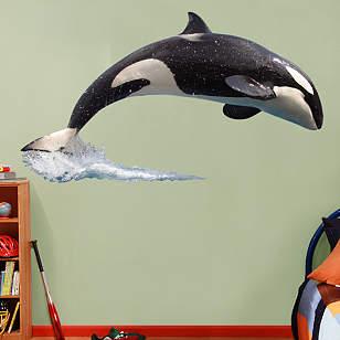 SeaWorld Orca & Crew