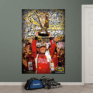 Tony Stewart 2011 Sprint Cup Champion Mural