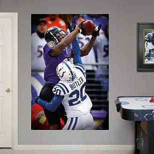 Anquan Boldin Touchdown Catch Mural