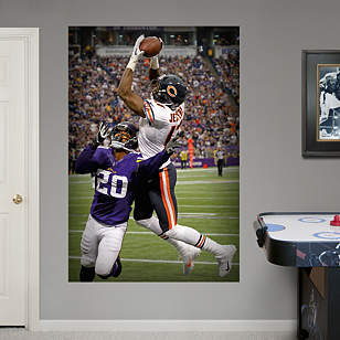 Alshon Jeffery Touchdown Catch Mural