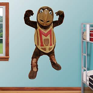 Maryland Terrapins Mascot - Testudo