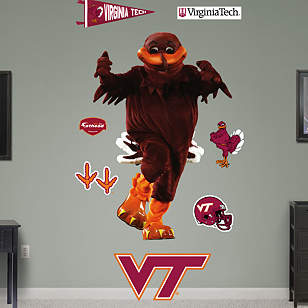 Virginia Tech Mascot - HokieBird