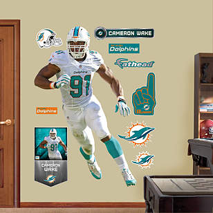 Cameron Wake - Defensive End