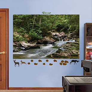 Wilderness Stream Mural