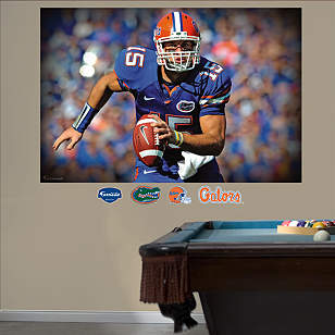 Tim Tebow Florida Mural