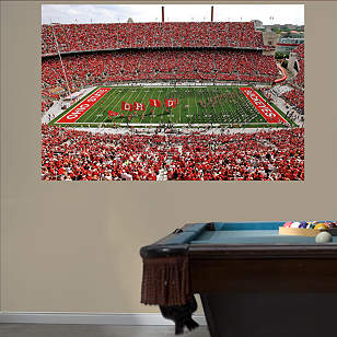 Ohio State - Buckeyes Entrance Mural