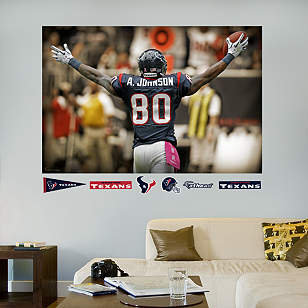 Andre Johnson Celebration - In Your Face Mural