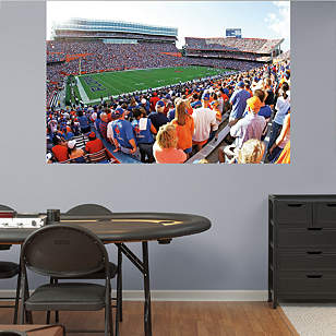 Florida Gators - The Swamp Stadium Mural
