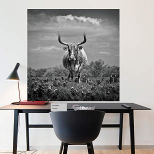 Texas Longhorn by Keith Dotson