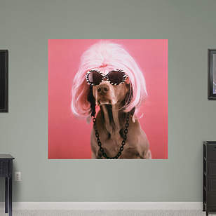 Glamour Puss by William Wegman