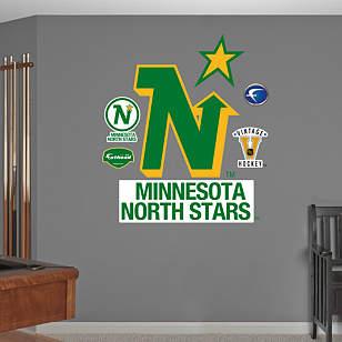 Minnesota North Stars Vintage Logo