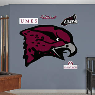 Maryland Eastern Shore Hawks Logo