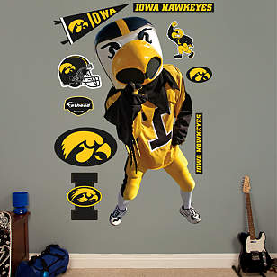Iowa Mascot - Herky the Hawk