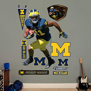 Jeremy Gallon - Michigan