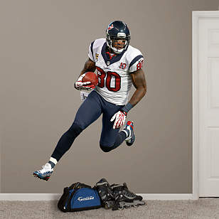 Andre Johnson - Away