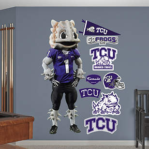 TCU Mascot - SuperFrog