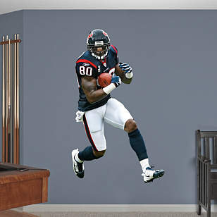 Andre Johnson Wide Receiver