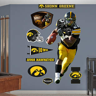 Shonn Greene Iowa