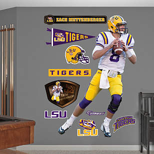 Zach Mettenberger - LSU