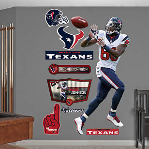 Andre Johnson - Reception