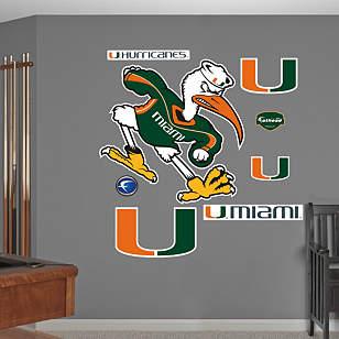 Miami Hurricanes Mascot - Sebastian