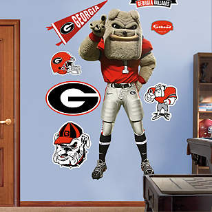 Georgia Mascot - Hairy Dawg