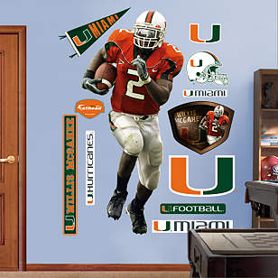 Willis McGahee Miami