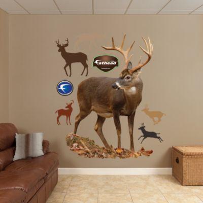 Deer - Red Buck