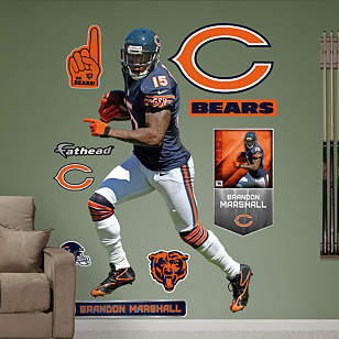 Brandon Marshall - No. 15
