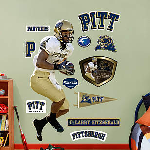 Larry Fitzgerald Pittsburgh