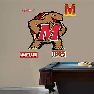 Maryland Terrapins 2012 Logo