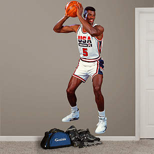 David Robinson: 1992 Dream Team