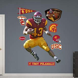 Troy Polamalu USC