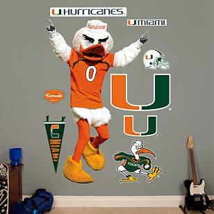 Miami Mascot - Sebastian
