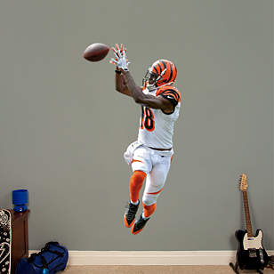 A.J. Green Wide Receiver