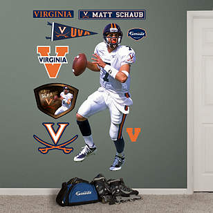 Matt Schaub Virginia