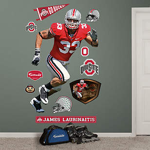 James Laurinaitis Ohio State