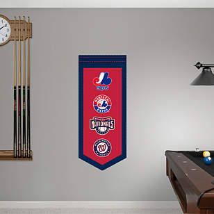 Washington Nationals Logo Evolution Banner