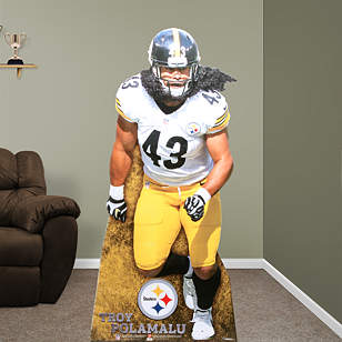 Troy Polamalu Stand Out