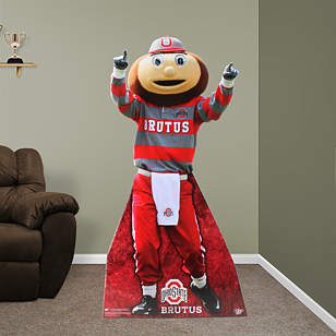 Brutus Buckeye Stand Out
