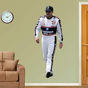 Dale Earnhardt  Driver
